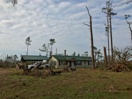 Hurricane Michael spared the Bunting family's home but laid waste to the Apalachee Wildlife Management Area north of Sneads in Jackson County.