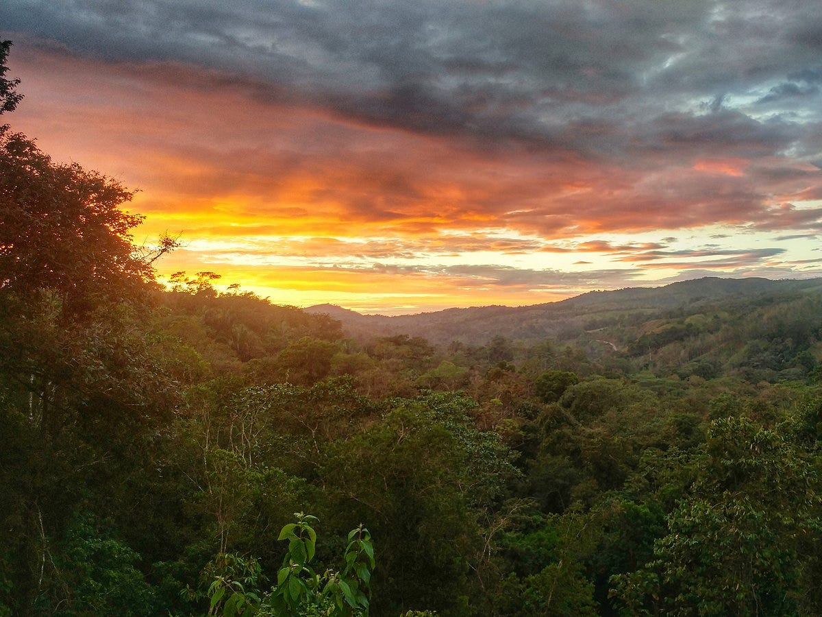Costa Rica abounds with a mix of microclimates, from cool-as-rain cloud forests to bright beaches.