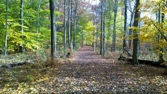 Trails near Lord Stirling Stable in the Basking Ridge section of Bernards.