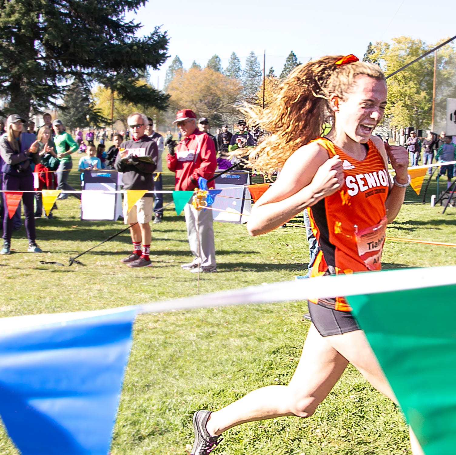 Gentry, O'Hara, Dean earn All-State finishes at cross country final