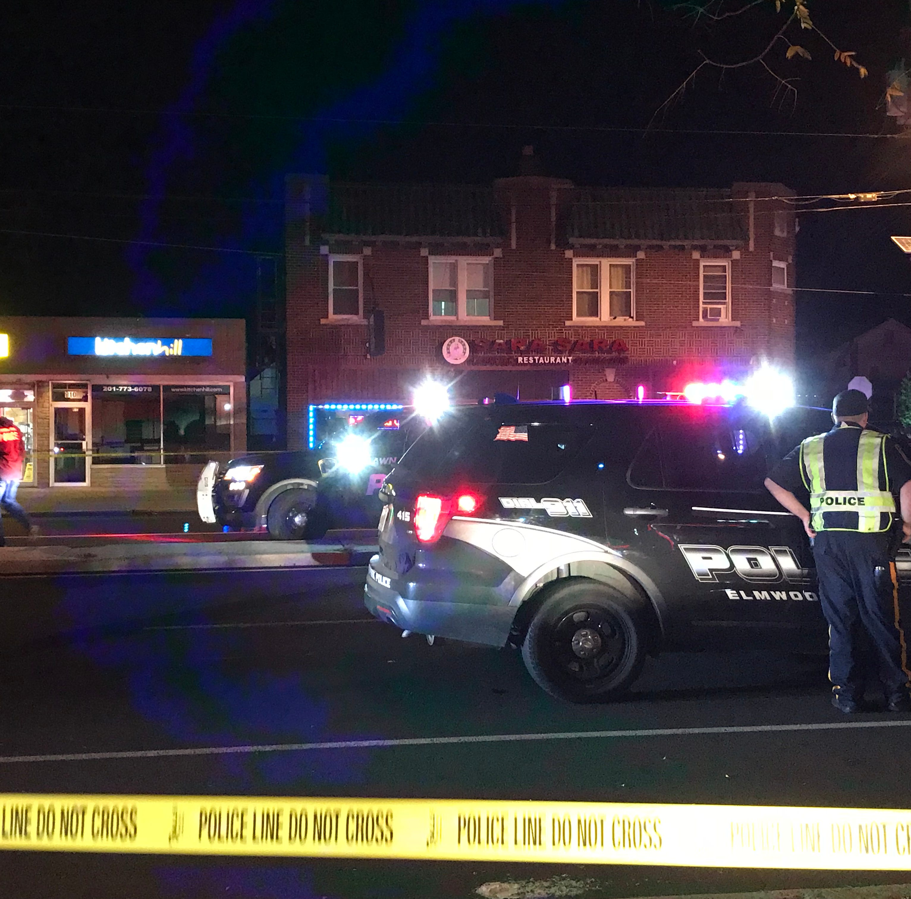 Pedestrian struck and killed in same Elmwood Park location as September fatality