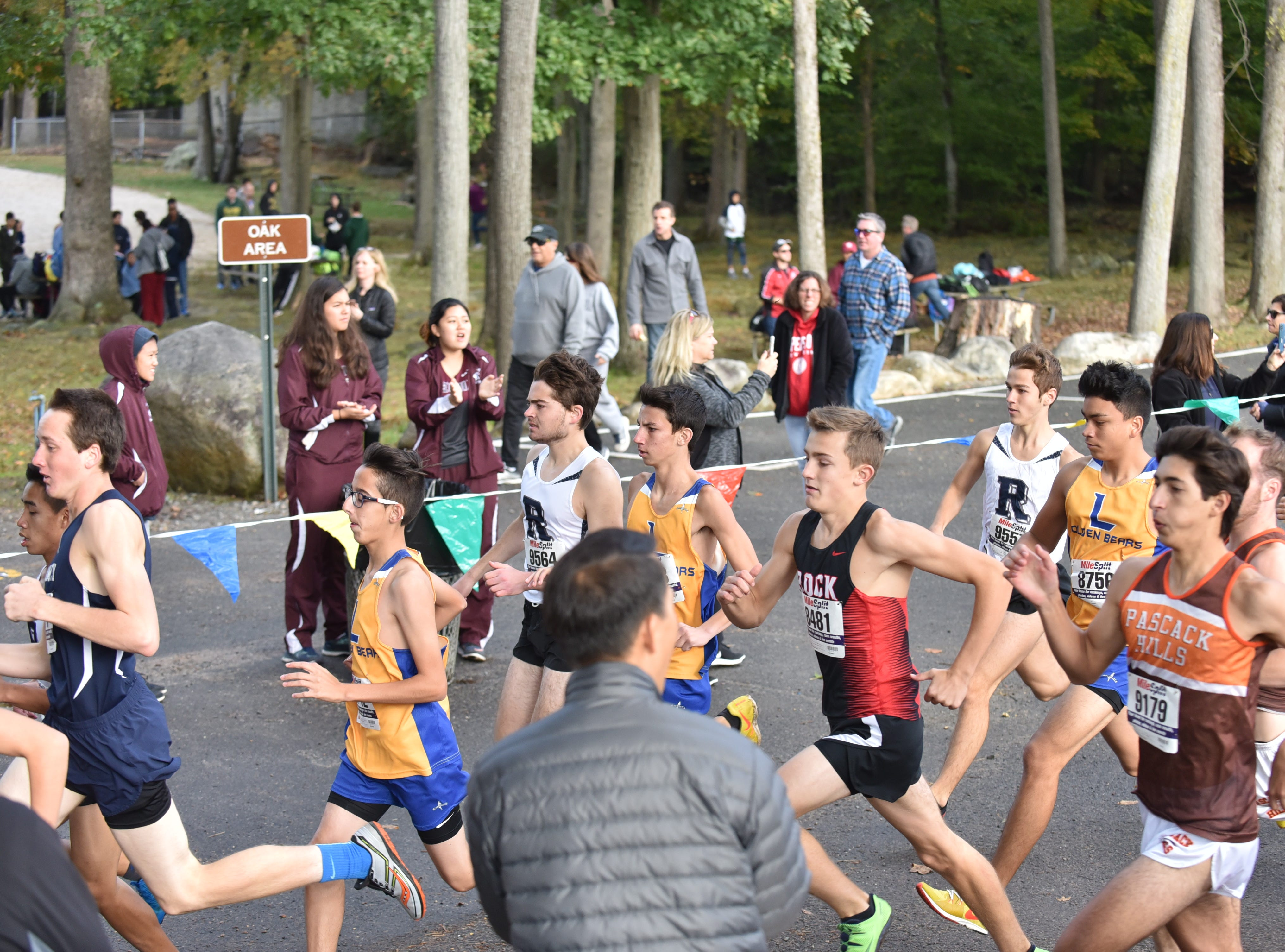 Start of Boys C at The Bergen County Cross Country Championships.