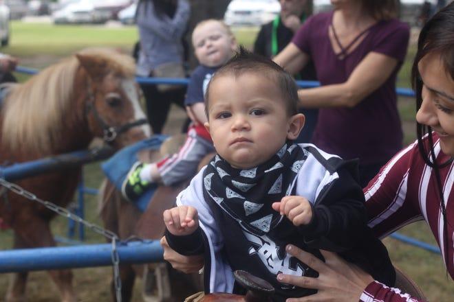 Children ride ponies at Fallapalooza, Oct. 20, 2018 in Carlsbad.