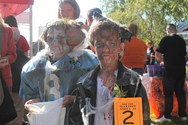Phoenix Shaw, an undead football player, and Keegan Cole, a zombified Danny Zuko, were two of the thousands of costumed kids that wound their way through Alameda Park Zoo on Saturday afternoon for the annual Zoo Boo trick or treating event.