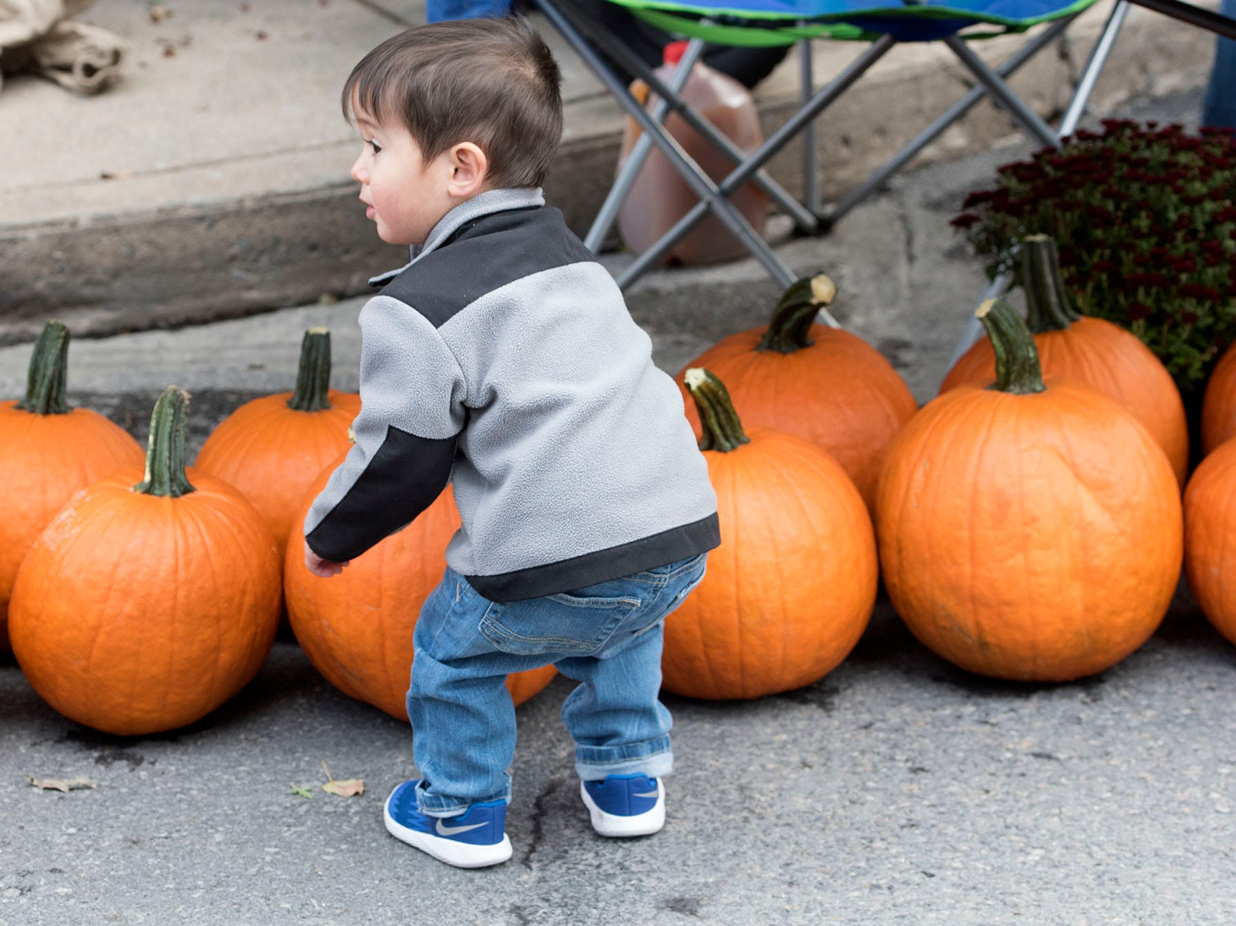 Alexander Carll, 2, enjoys the pumpkins. Applefest started Saturday morning October 20, 2018 in downtown Chambersburg.