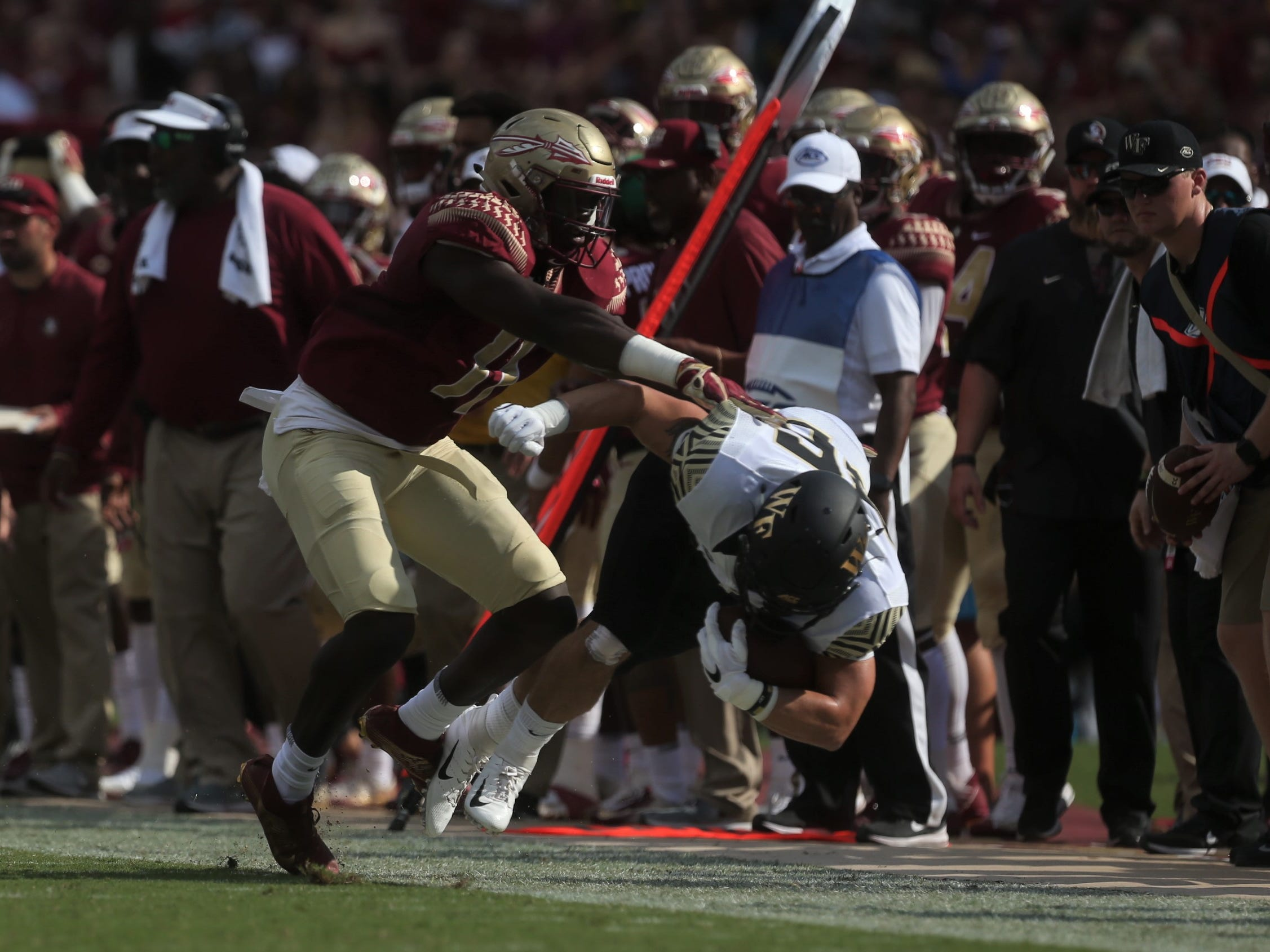 Florida State defensive ned Janarius Robinson chases down Wake Forest running back Cade Carney and pushes him out of bounds during a game at Doak Campbell Stadium on Saturday, Oct. 20, 2018.