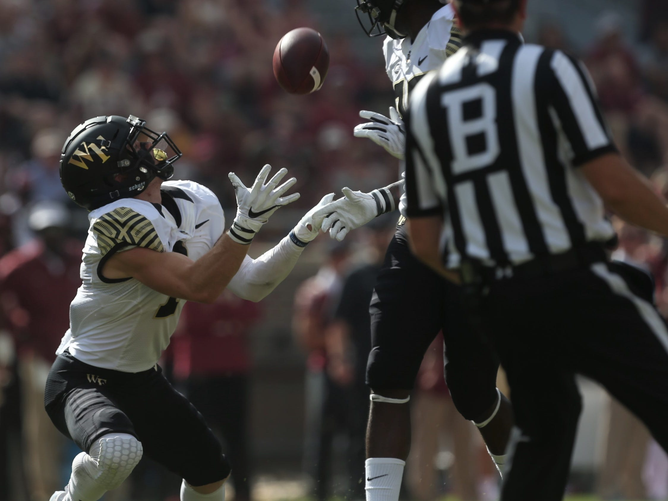 Wake Forest's Alex Bachman catches a punt during a game against Florida State at Doak Campbell Stadium on Saturday, Oct. 20, 2018.