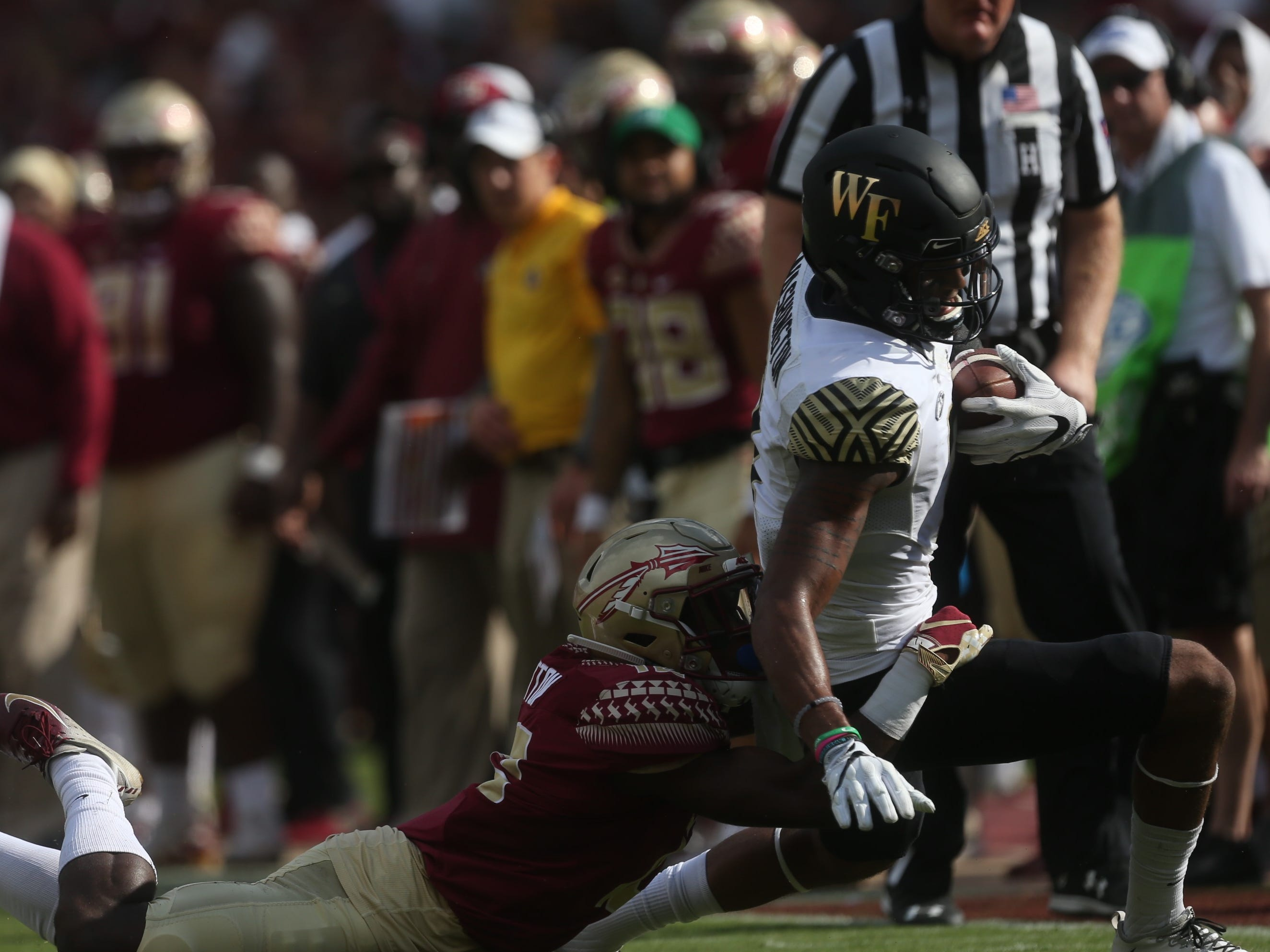 Florida State defensive back A.J. Lytton brings down Wake Forest receiver Scott Washington along the boundary during a game at Doak Campbell Stadium on Saturday, Oct. 20, 2018.