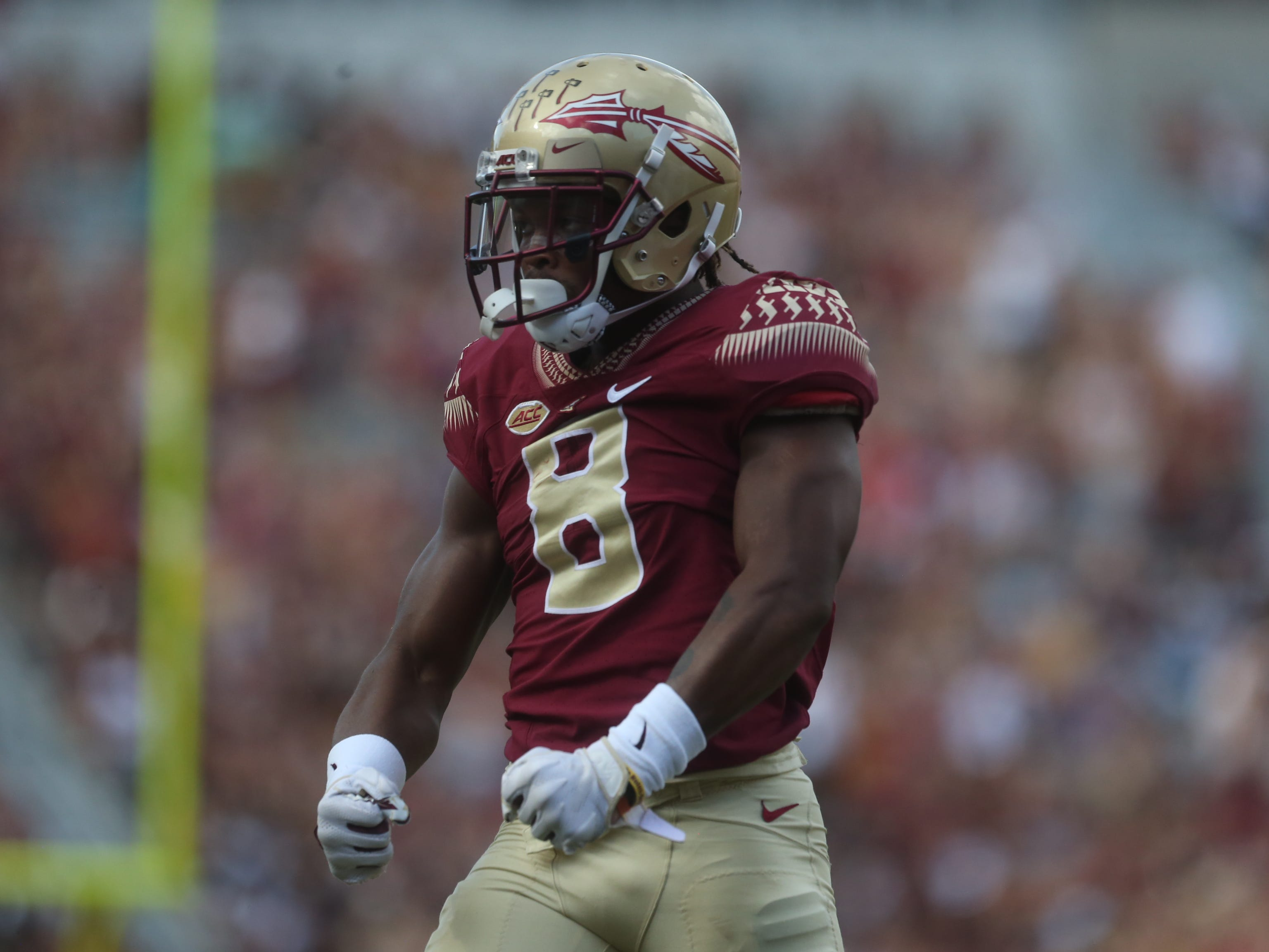 Florida State receiver Nyqwan Murray celebrates a long catch against Wake Forest by flexing his muscles at the Doak Campbell Stadium crowd on Saturday, Oct. 20, 2018.