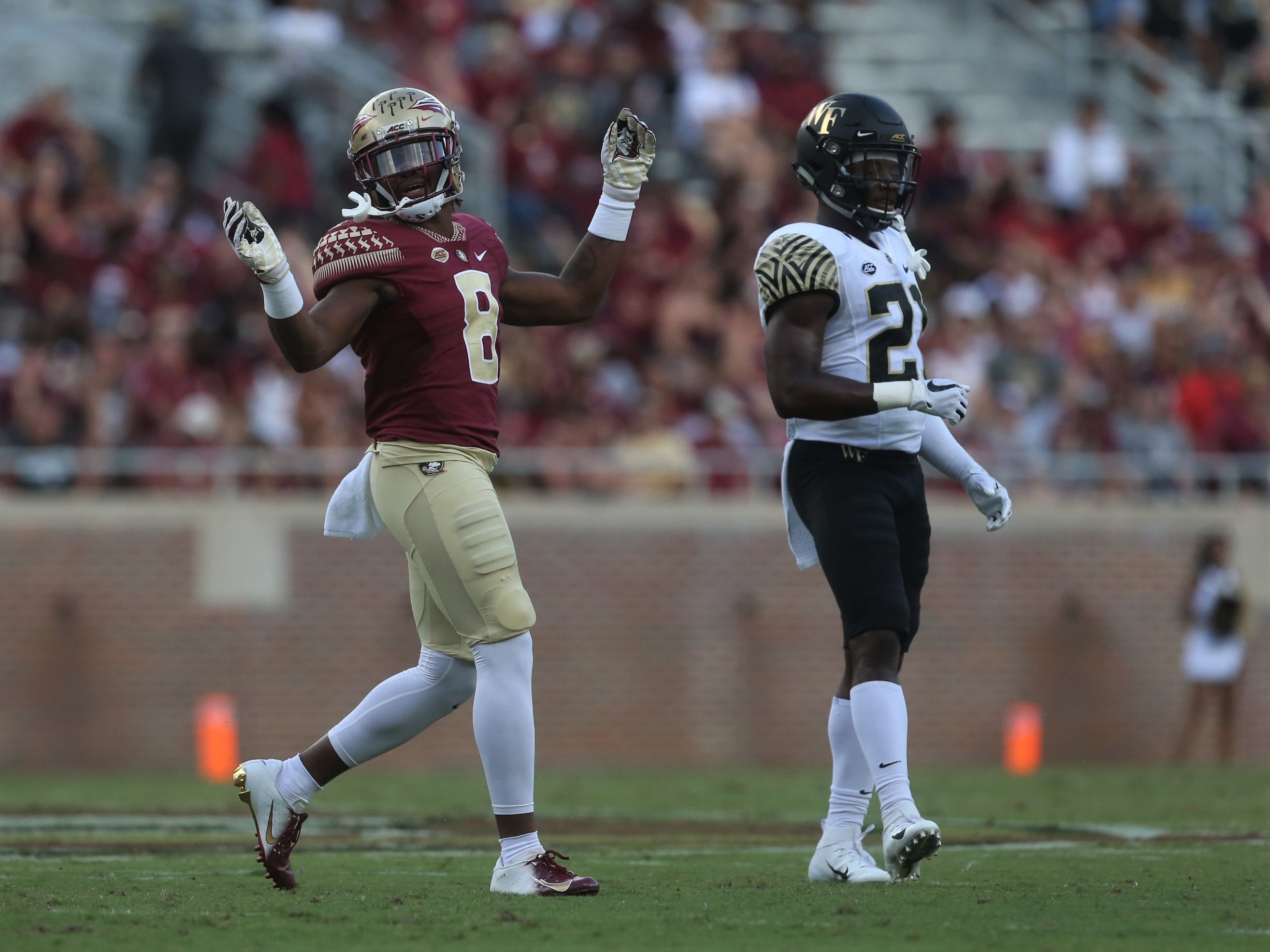 Florida State receiver Nyqwan Murray celebrates a big play against Wake Forest during a game at Doak Campbell Stadium on Saturday, Oct. 20, 2018.