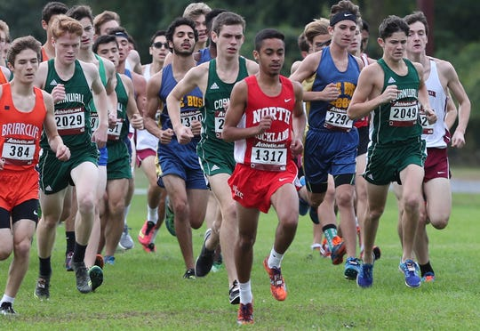 North Rockland's Daniel Shephard is at the head of the pack during the start of the second boys varsity race Saturday during the Section 1 Coaches Cross-Country Invitational at Bowdoin Park in Wappingers Falls. Shephard won the race.