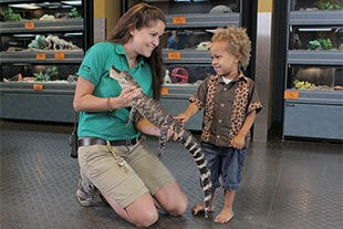 Brevard Zoo holding special education sessions in January.