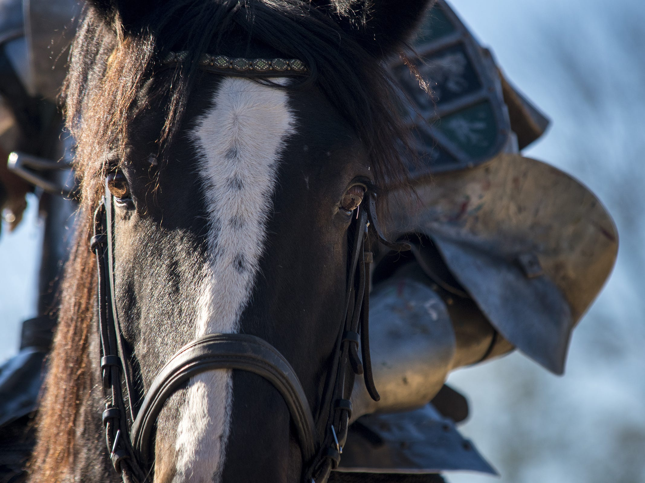 Sir Robert rides through the lists during the live jousting show at the Ohio Renaissance Festival Sunday, October 21, 2018 in Waynesville, Ohio.