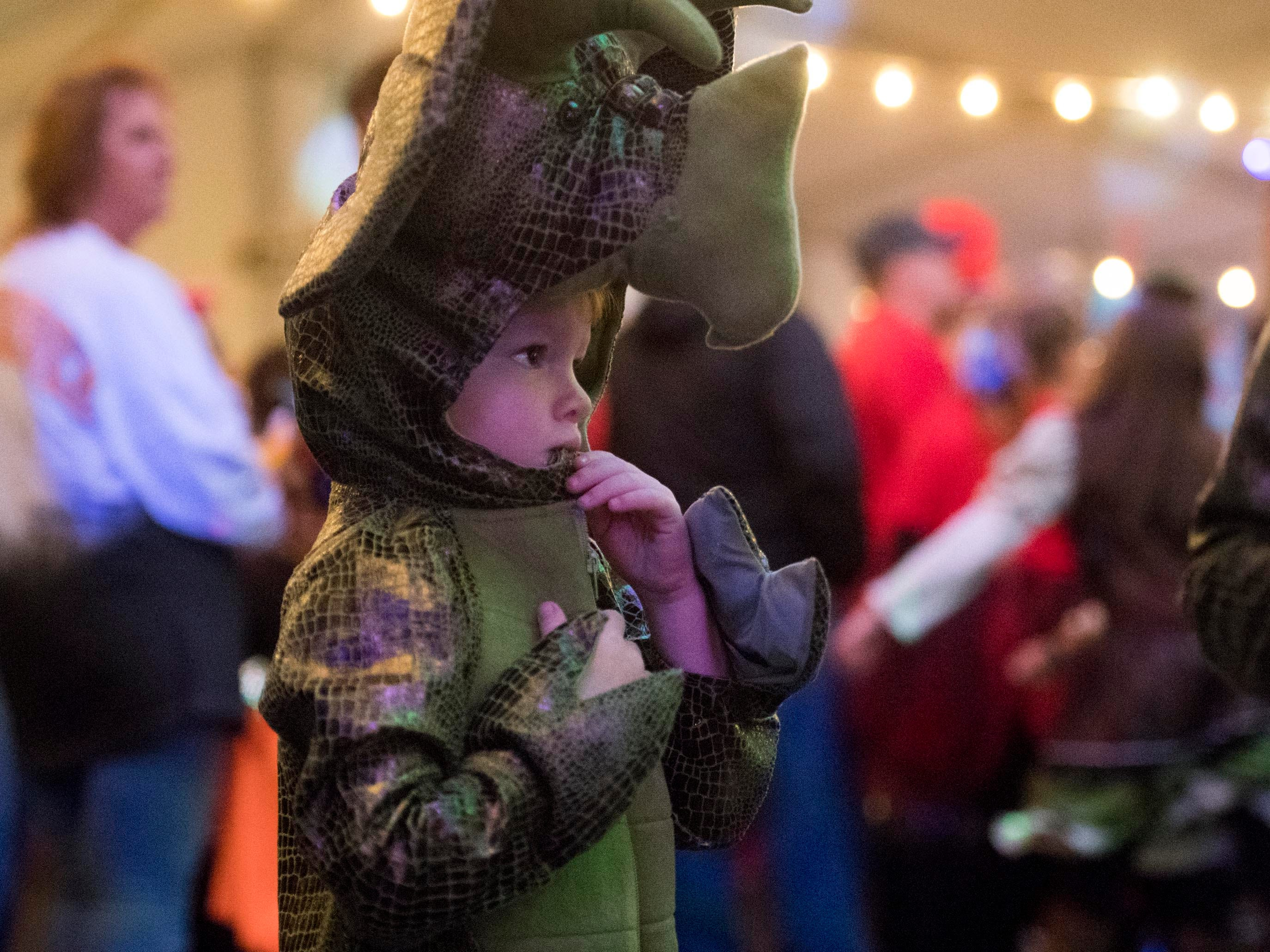 A trick-or-treater attends the Monster Mash dance party at Zoo Knoxville's Boo! at the Zoo on Saturday, October 20, 2018.