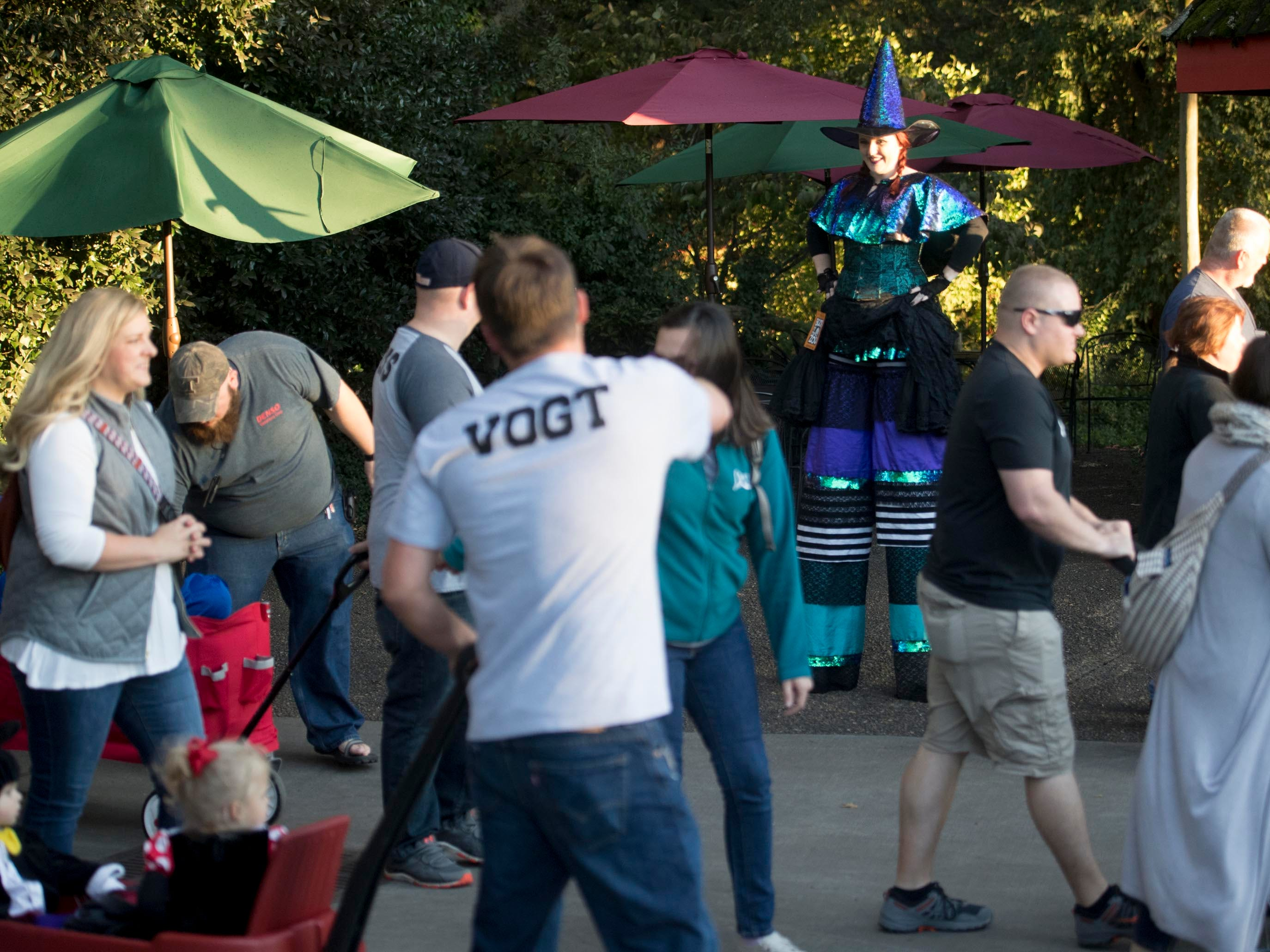 A tall witch volunteers at Boo! at the Zoo and greets guests at Zoo Knoxville on Saturday, October 20, 2018.