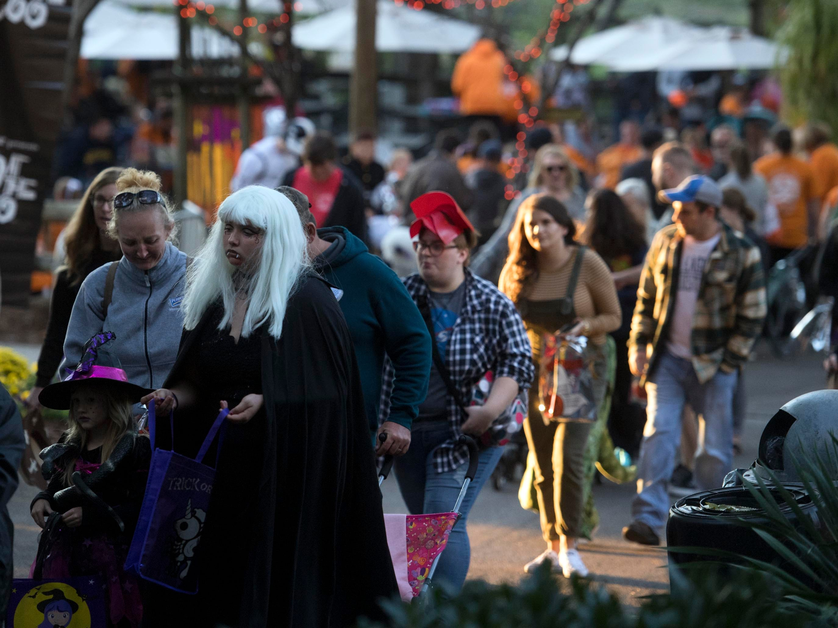 Zoo Knoxville's Boo! at the Zoo on Saturday, October 20, 2018.