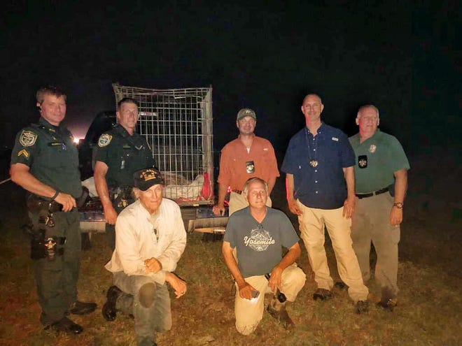 Tahane is safe. The elderly wolf who escaped from the  Seacrest Wolf Preserve  was  recovered late Friday with the help of residents in Washington County.