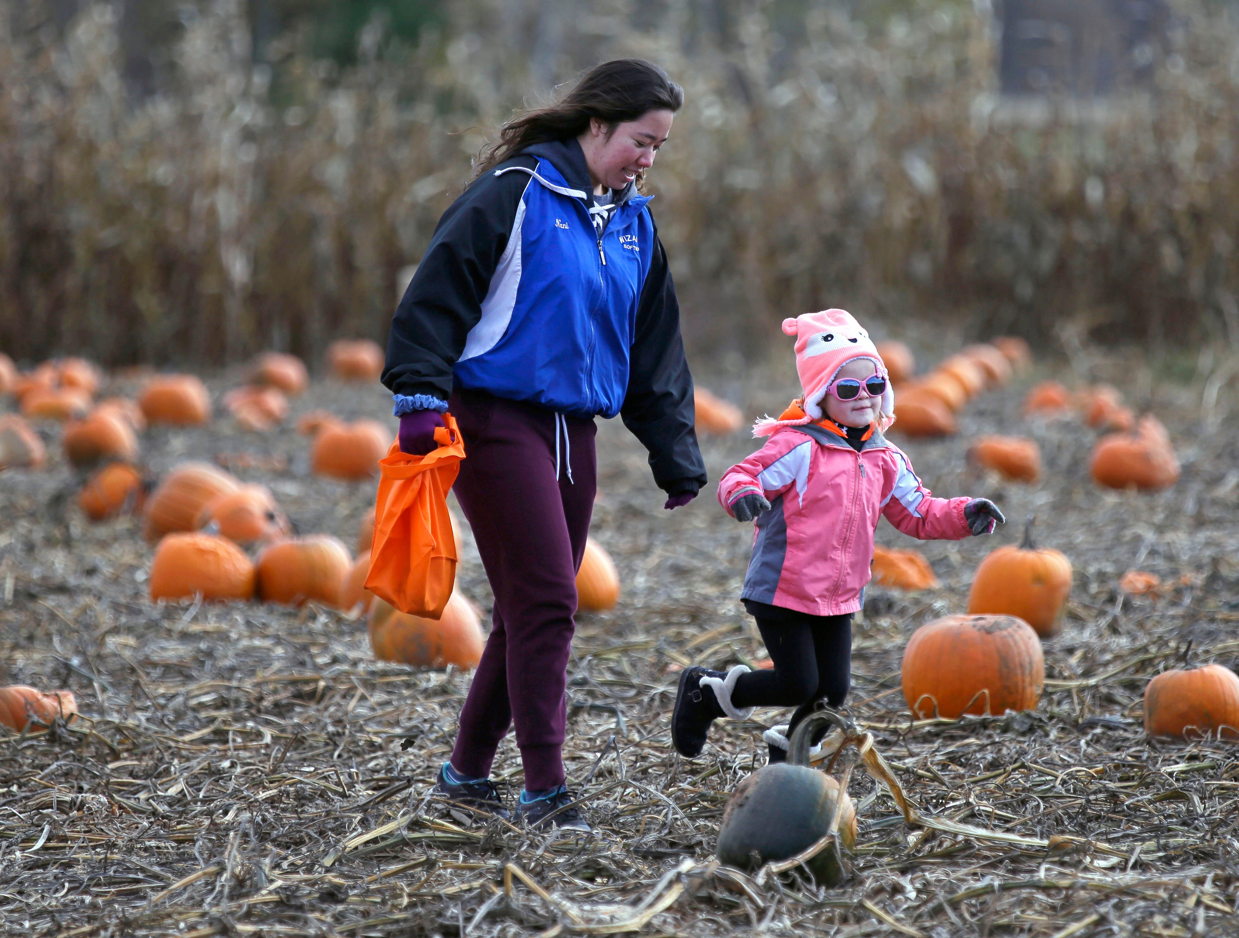 Carley Rasmussen of Black Creek has her sunglasses on as she runs through the pumpkin patch with Hoku Tanigchi Sunday, October 21, 2018, at Cuff Farms in Hortonville, Wis.
