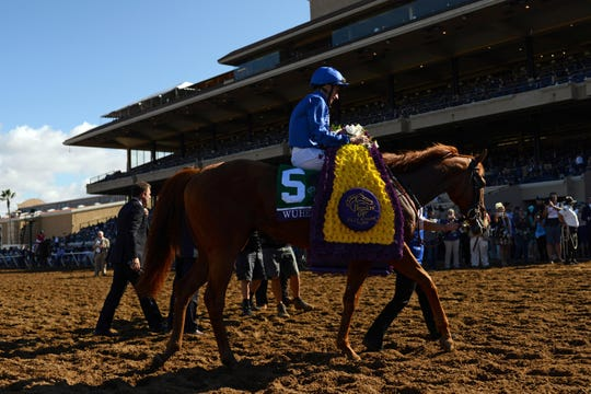 Wuheida, ridden by William Buck, makes her way into the winner's circle during the 34th Breeders Cup world championships at Del Mar Thoroughbred Club in 2017.AY Sports