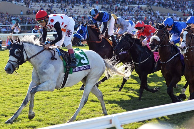 World Approval (5) wins the Mile during the 34th Breeders Cup world championships at Del Mar Thoroughbred Club in 2017.