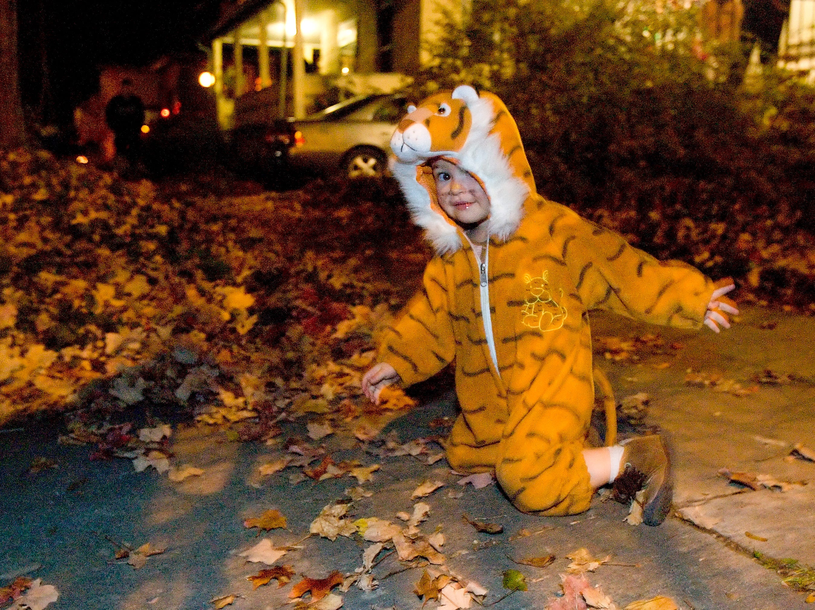 2008: Luce Chebance practices his tiger crawl on N. Tioga Street while trick-or-treating in Fall Creek.