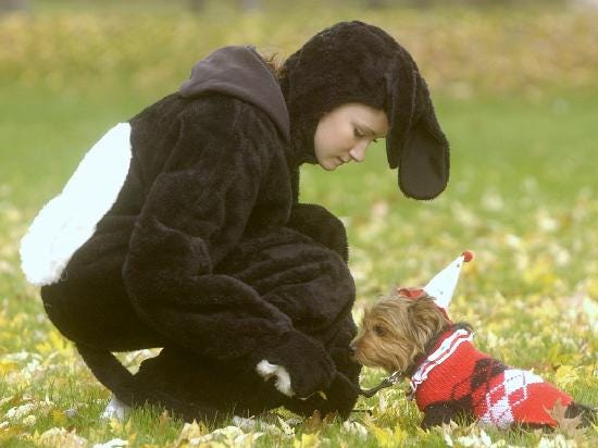 2004: Meghan Terry, 13, dressed up as a dog and the one-and-a-half year old Yorkshire terrier Arielle was put in a clown suit for the two-mile walk/run to benefit the Animal Care Council of Endicott and Pets Are Wonderful Support Program Sunday at Otsiningo Park.
