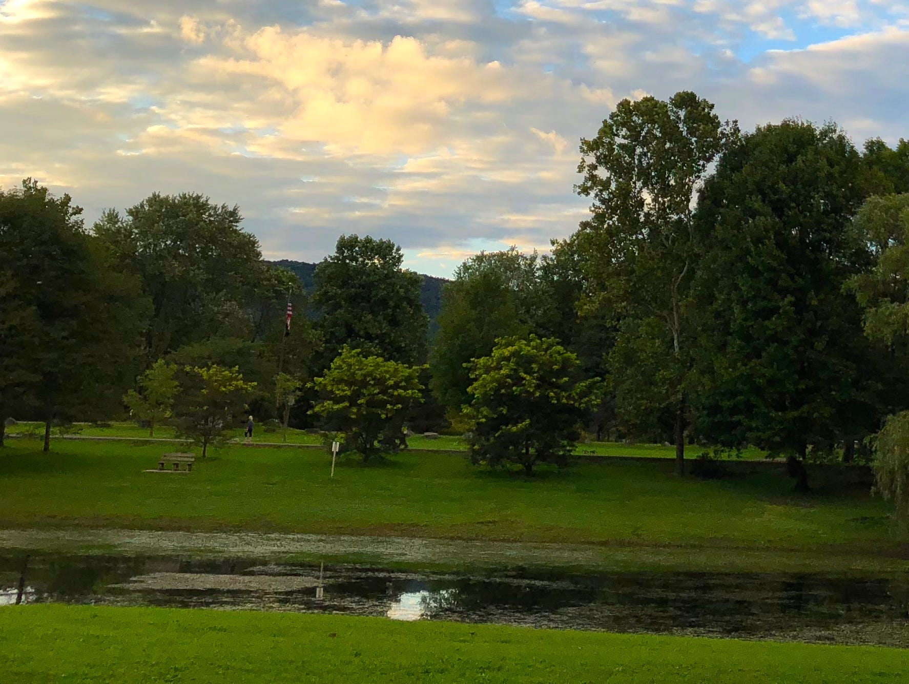 Otsiningo Park.