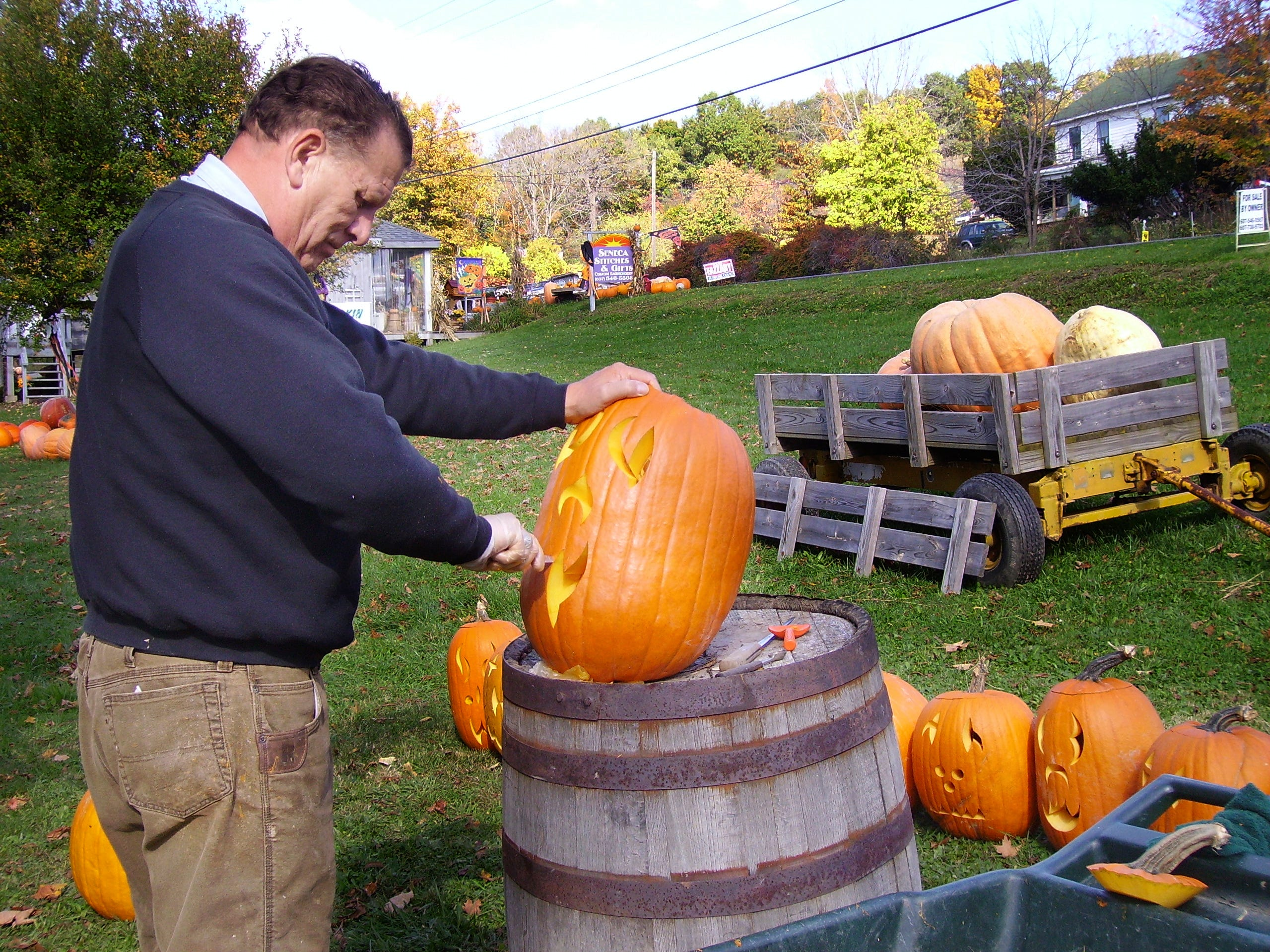2007: Robert Kappenberg carves a pumpkin in the front yard of his Route 414 home in Hector, preparing for his annual Halloween pumpkin exhibit Tuesday and Wednesday nights. By the time he lights the candles in each pumpkin, he will have carved between 150 and 200 pumpkins.