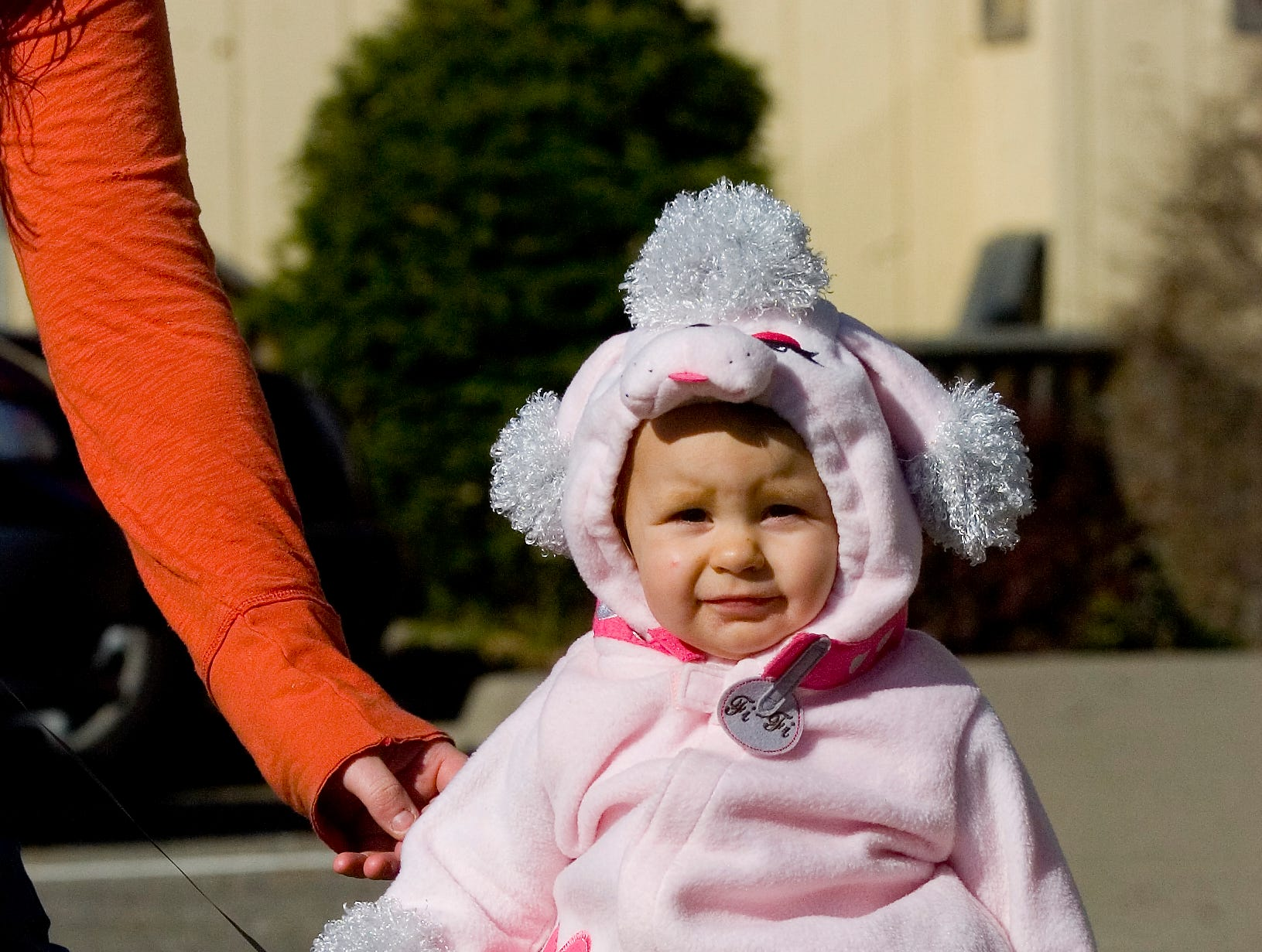 2008: One-year-old Emma Meara is dress up as a poodle for Halloween on Firday. She is the daughter of Danielle Sculley of Endicott.