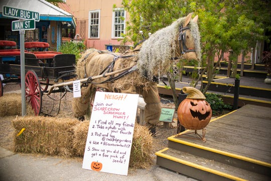 The Rockledge Gardens Fall Festival includes a costume contest, food trucks and face painting.