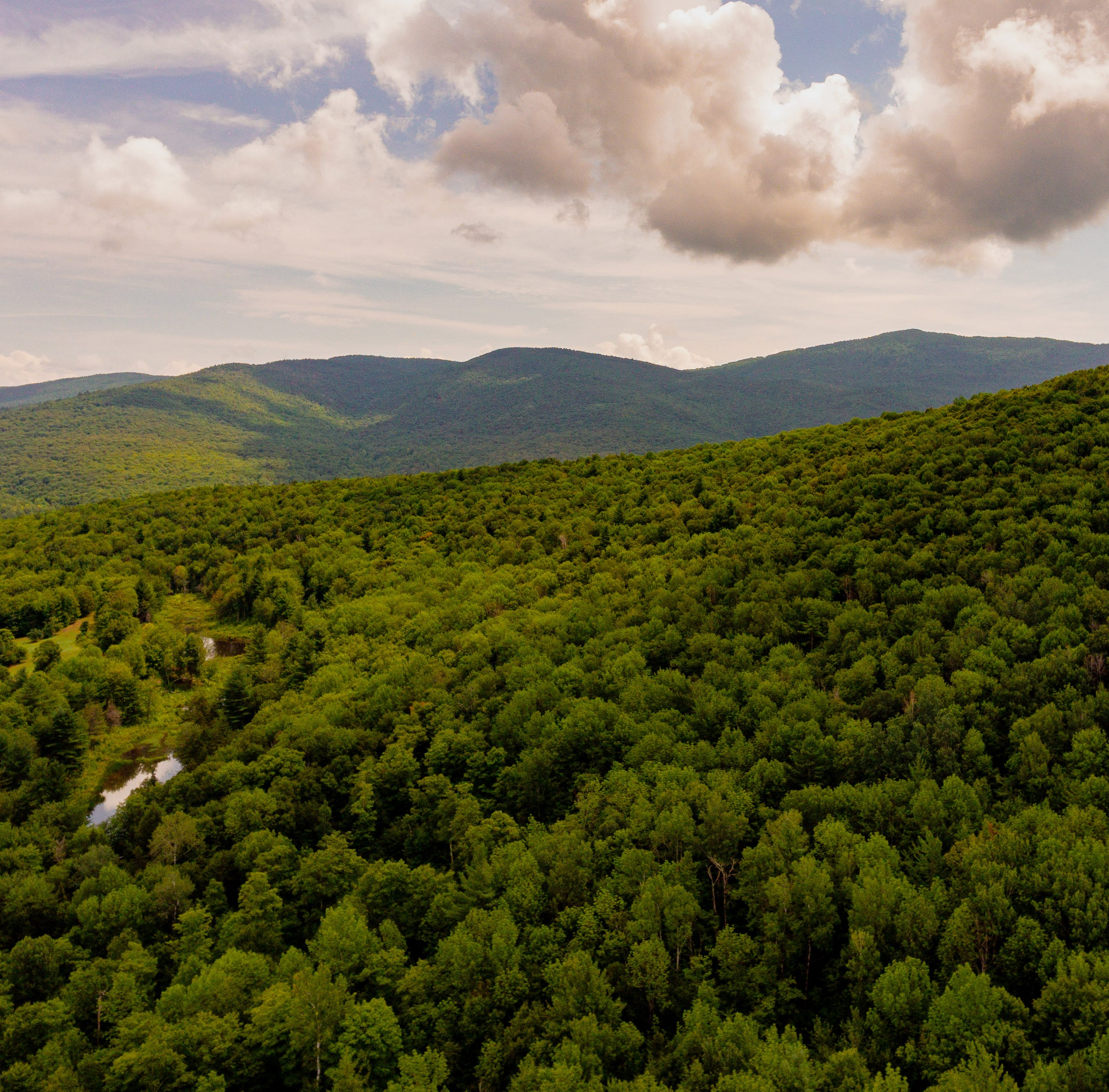 Stowe real estate: $9.95 million asking price for huge forested parcel
