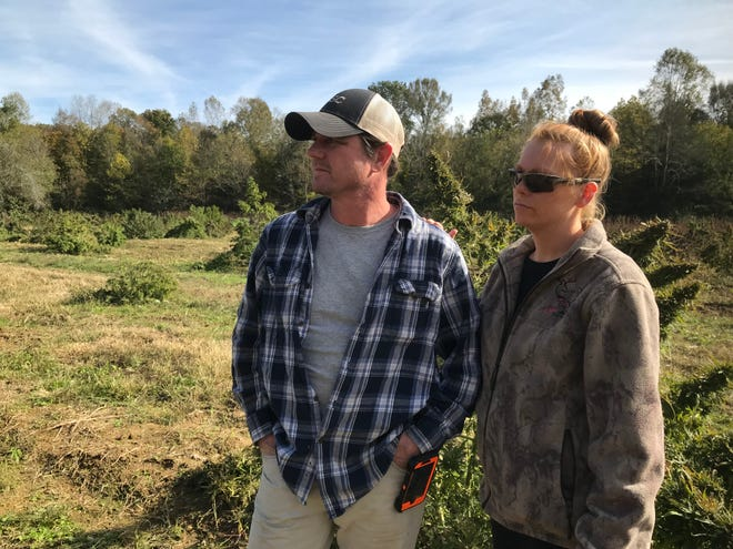 Tracy and Krista Lehman at their hemp farm in Indian Mound, where a group of at least four men were caught plundering their crop but fled. Tracy Lehman chased them to Woodlawn even as they  opened fire on him but they got away in a school zone.