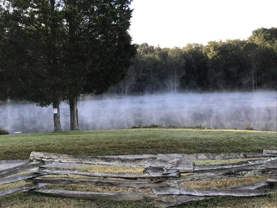 Fog rises on a chilly Monday morning off South Northshore Drive, across from the Town Center Boulevard intersection in Southwest Knox County.