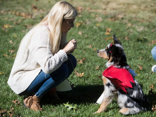 Alissa Cox dressed her Australia shepherd Cojo in a half angel and half devil costume for the Howl-O-Ween Pooch Parade and Pet Expo at the UT Gardens on Sunday, October 21, 2018.