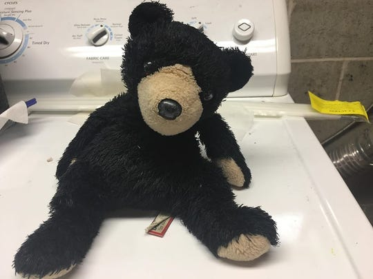 After finding Blueberry the teddy bear bobbing in the pond at Elm Grove Park, the Fadeski family washed and dried him, or as they like to say, pampered him with spa treatments. Then they set out to find his owner.