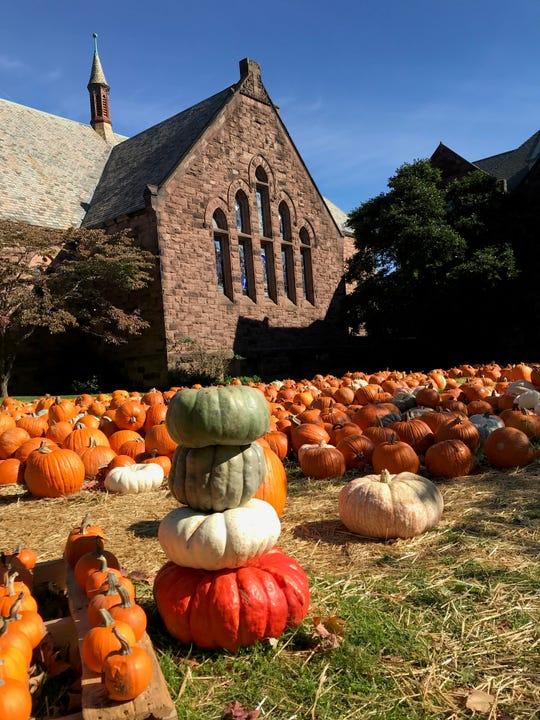 The annual pumpkin patch at St. Luke's Episcopal Church. Montclair, NJ, October 20, 2018.