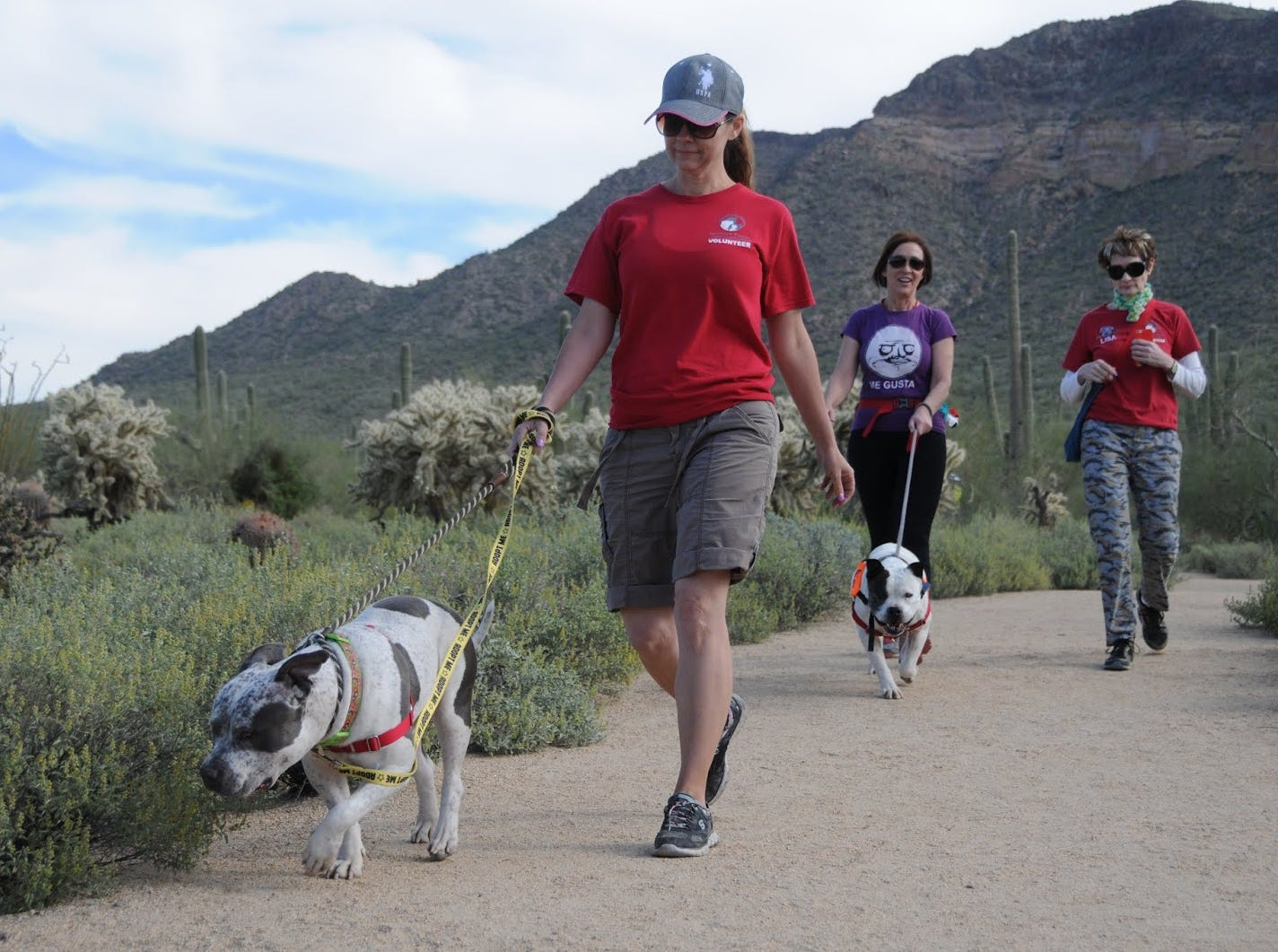 Enjoy hiking in beautiful Usery Mountain Regional Park.