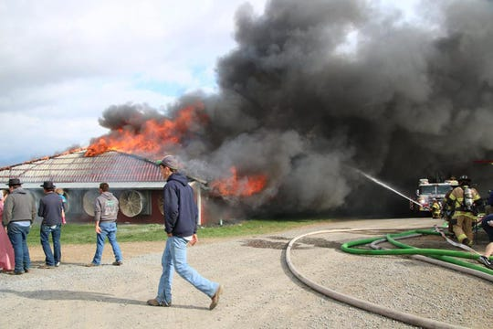 Neighbors can only watch as fire overtakes a barn. About 26,000 ducks perished in a poultry barn fire on Saturday on Buttermilk Road, Quincy Township.