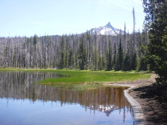 A view of Mt. Washington from the fourth Patjens Lake.