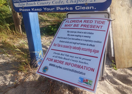 Red tide, deadly to sea life and a turnoff for tourists, has again been found off Florida's Gulf Coast.