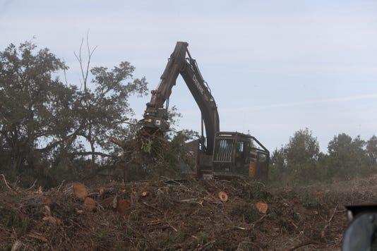 Debris Pile 102218 Ts 053