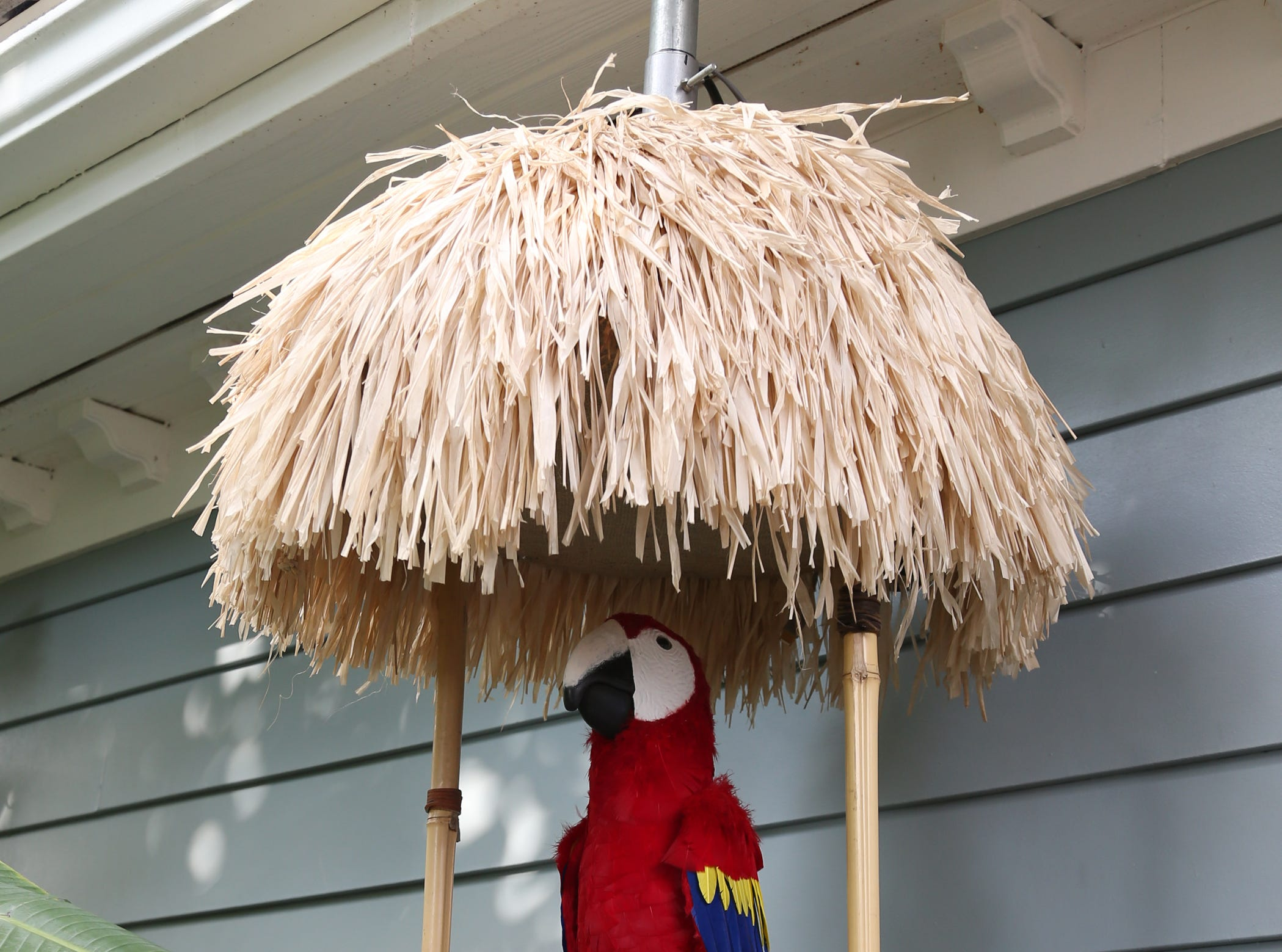 An animatronic bird named Pedro welcomes guests to the Victorian-style home of Mike and Lorraine Newlon in the Santa Rosa Valley. The bird was made by the same people who worked on the characters in the Enchanted Tiki Room at Disneyland.