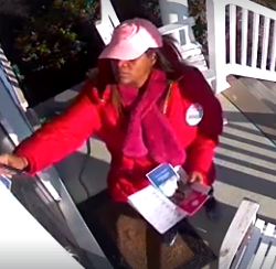 This screenshot taken from a video posted on Facebook by a Middletown resident on Sunday allegedly shows Democratic state House candidate Monique Johns removing her political rival's campaign pamphlet and replacing it with one of her own.