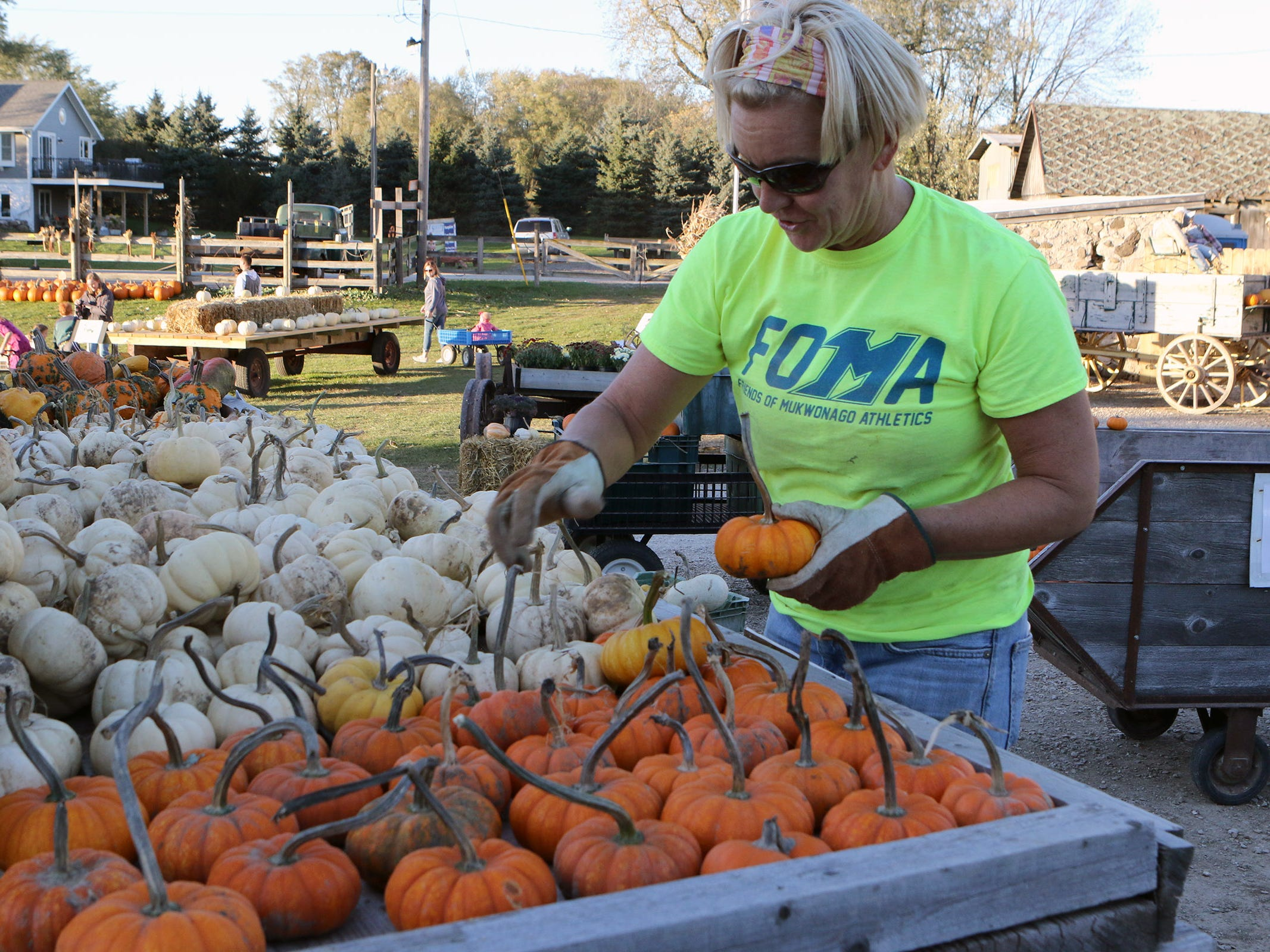 Laurie Hollern sorts pumpkins for sale at Schuett Farms in Mukwonago on Oct. 22.