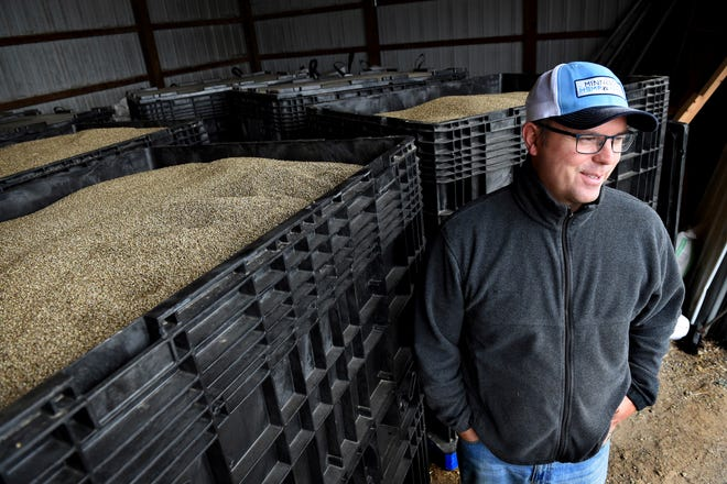 In this Oct. 5, 2018 photo, John Strohfus speaks has he stands by 2,000-pound containers of Katani hemp seed in a storage building on their farm in Afton, Minn. Strohfus, the president of Minnesota Hemp Farms and one of the state's leading advocates promoting hemp farming, has harvested his hemp crop for the year.