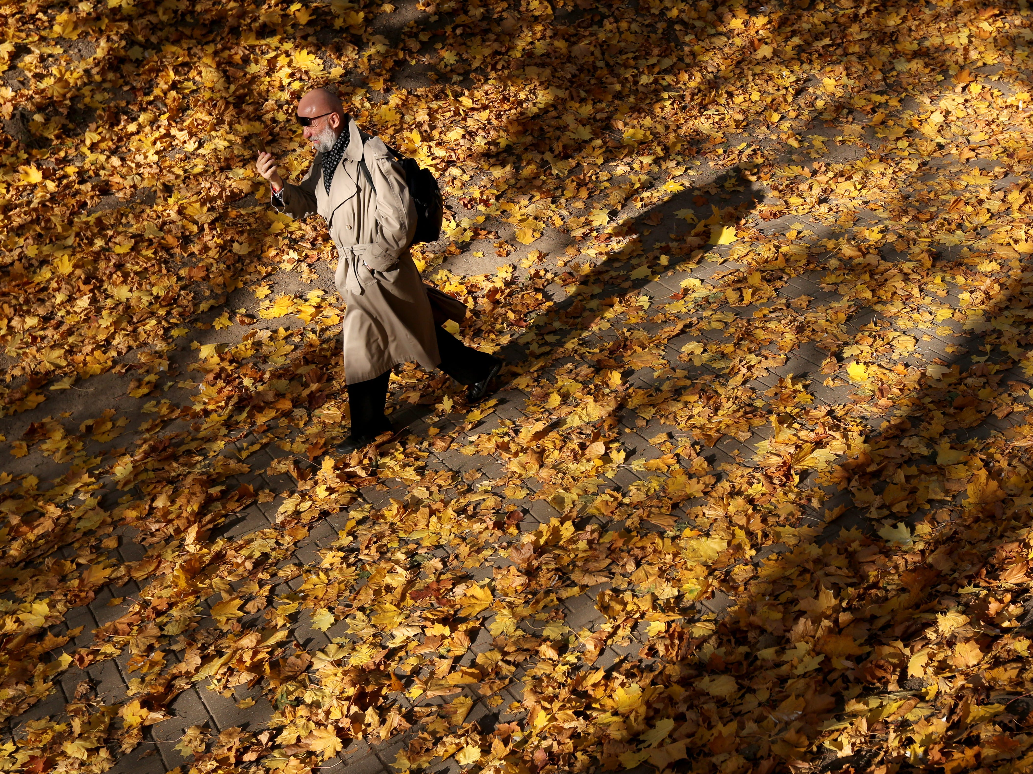 A man walks on seasonal leaves in a central park on a sunny day in Minsk, Belarus on Oct. 18, 2017.