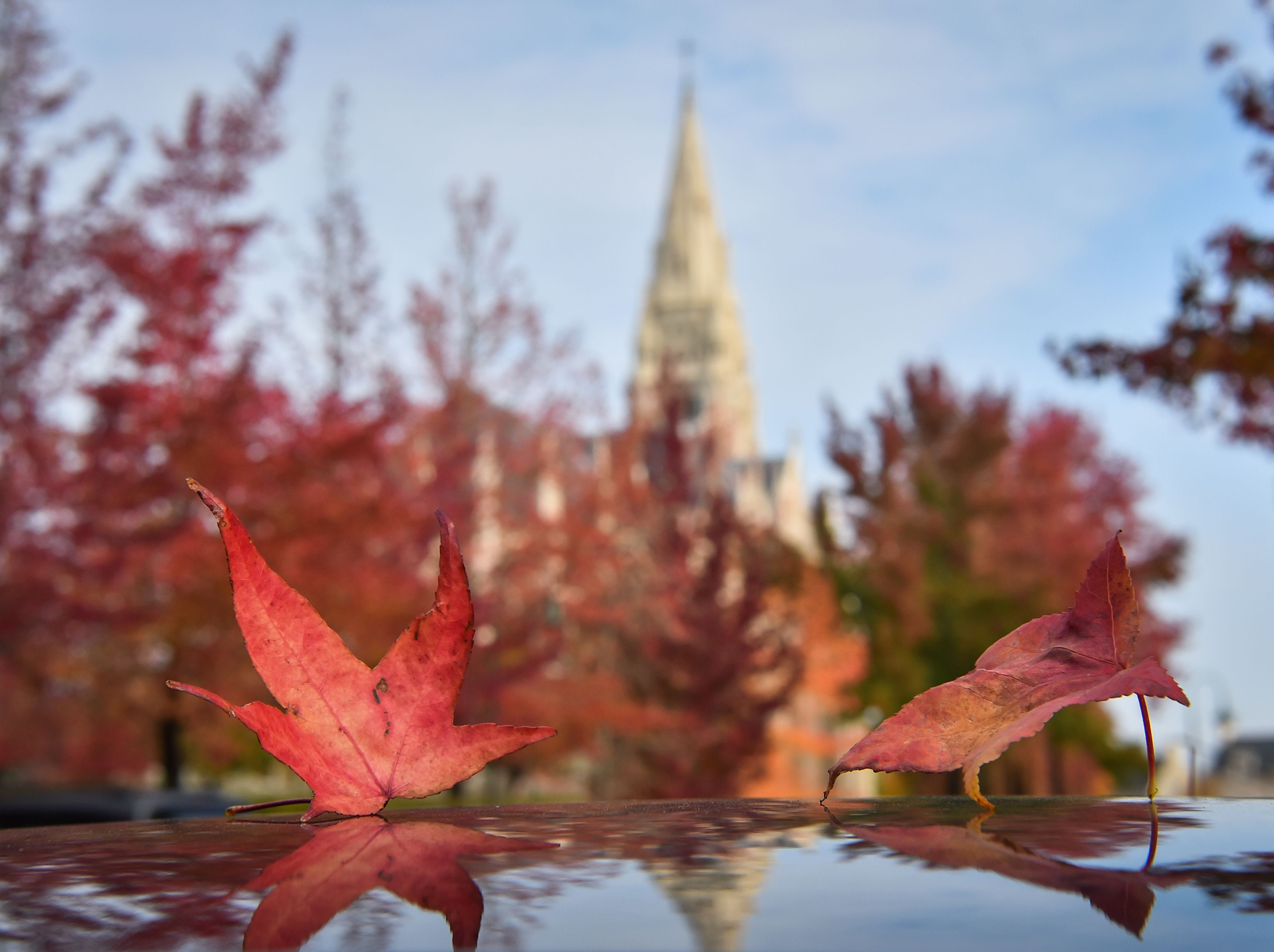 A picture taken on Oct. 18, 2018 shows autumn dead leaves falling down in front of the Sainte-Bernadette church in Orvault, France.