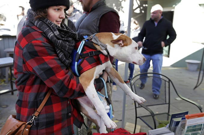Michelle Sharp carries Seymour during Dogtoberfest.  The event, a collaboration between Fox River House and the Fox Valley Humane Association, was Oct. 20.