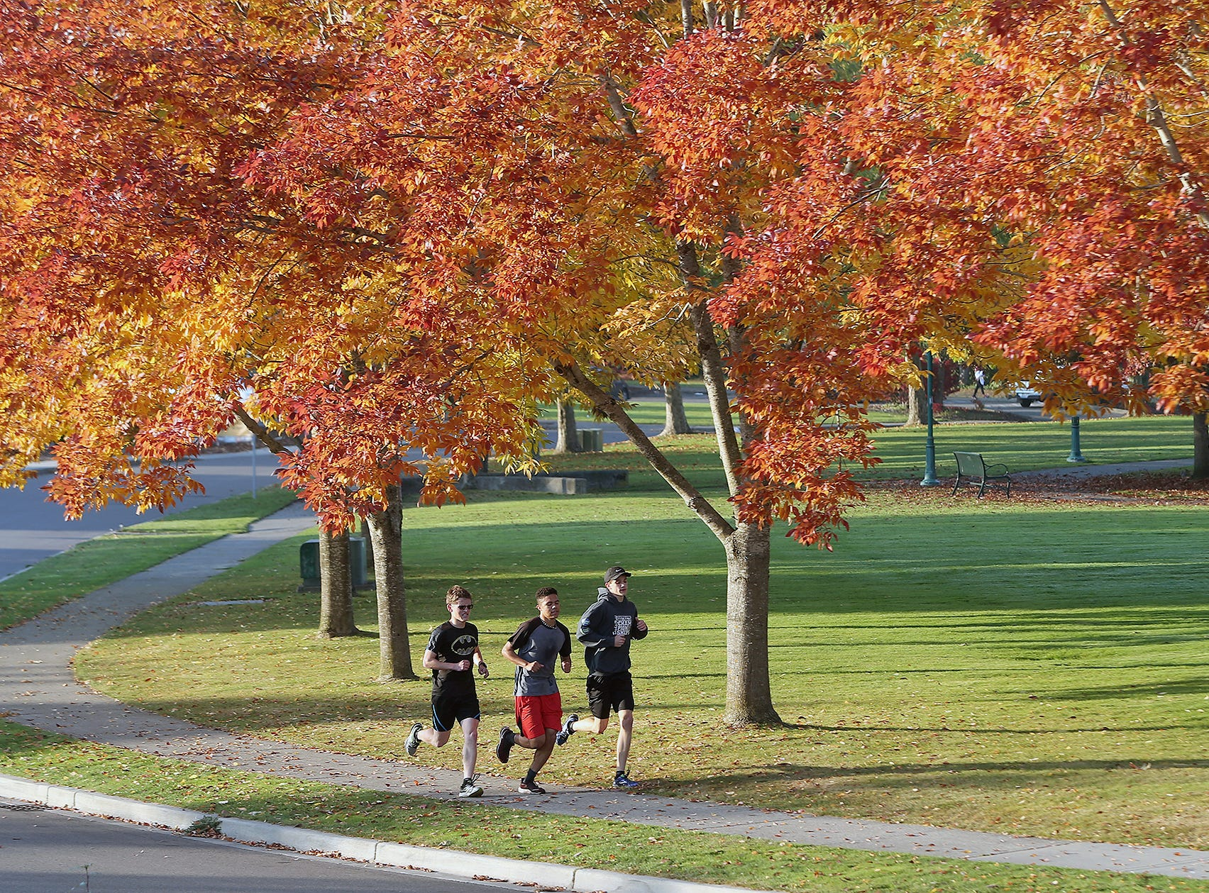 Members of the Olympic College men's cross-county team run during practice at Evergreen Rotary Park in Bremerton on Monday, October 22, 2018. After the fog burned off the bright colors of fall appeared.