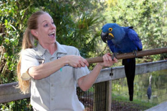 Brevard Zoo will honor veterans Nov. 10 and 11 with free admission.